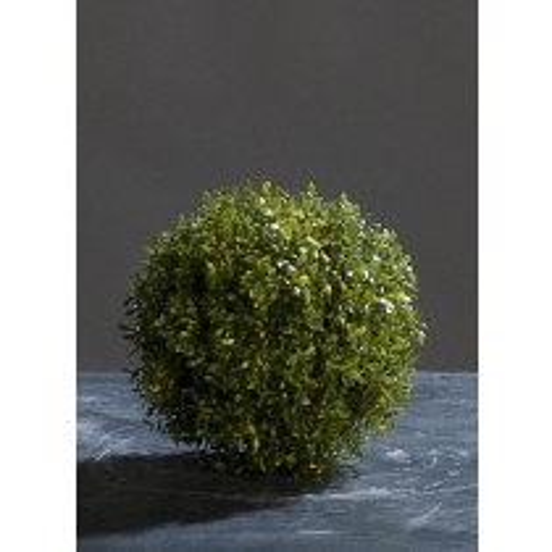 Thyme Ball